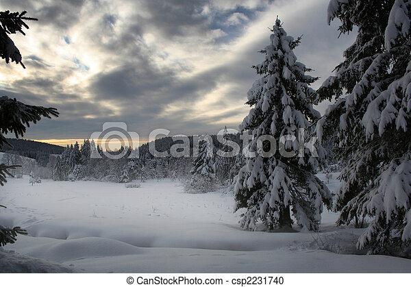 inverno - csp2231740