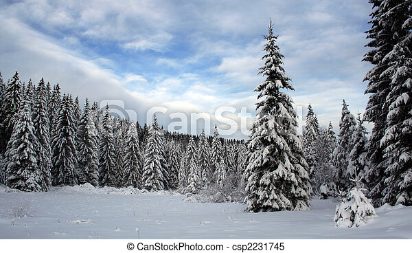 inverno - csp2231745
