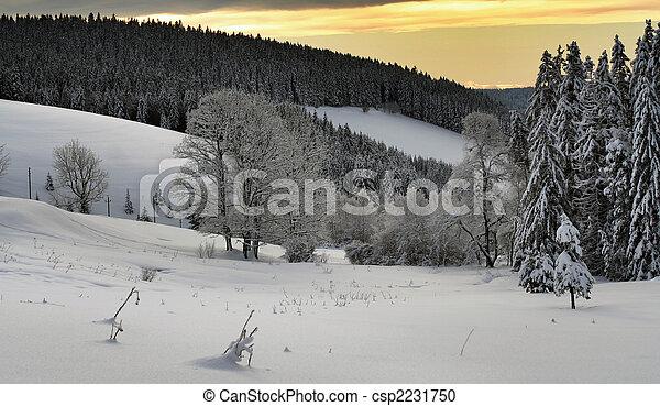 inverno - csp2231750