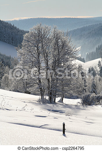 inverno - csp2264795
