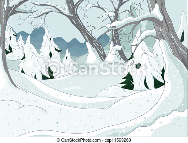 inverno, foresta - csp11593260