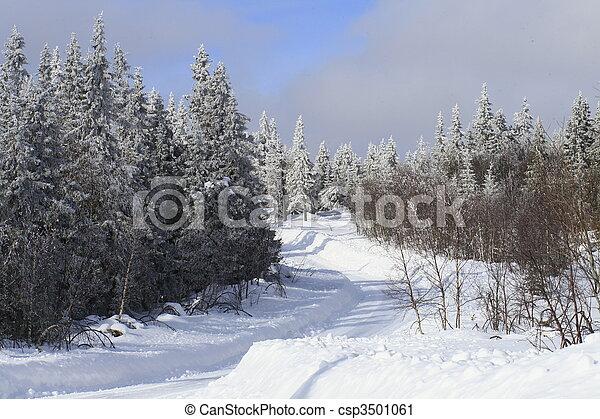 inverno - csp3501061