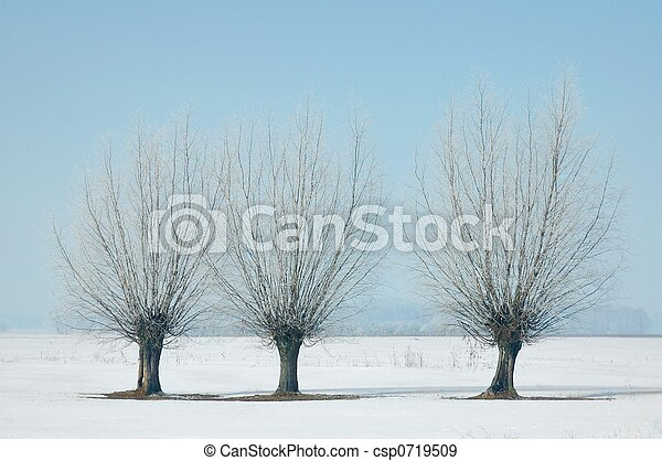 inverno - csp0719509
