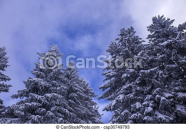 inverno - csp30749793