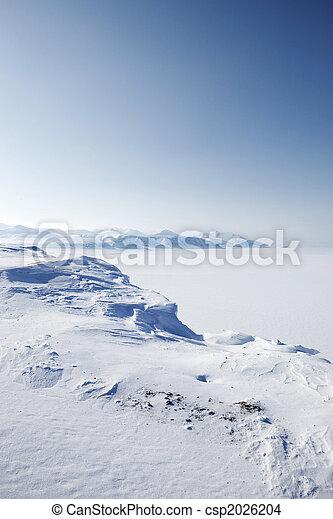 inverno, selva, neve - csp2026204