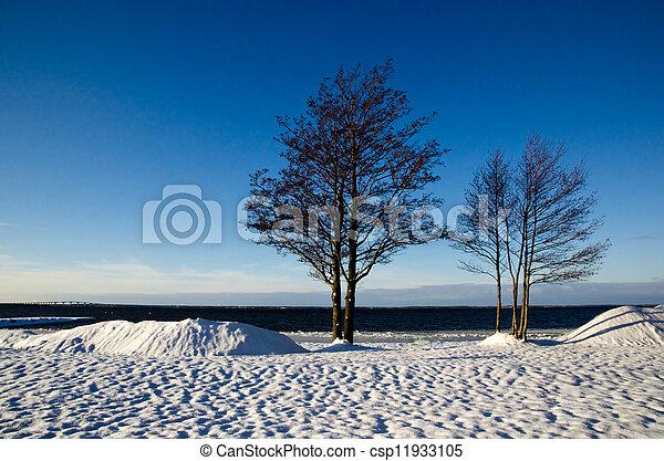 inverno, vista - csp11933105