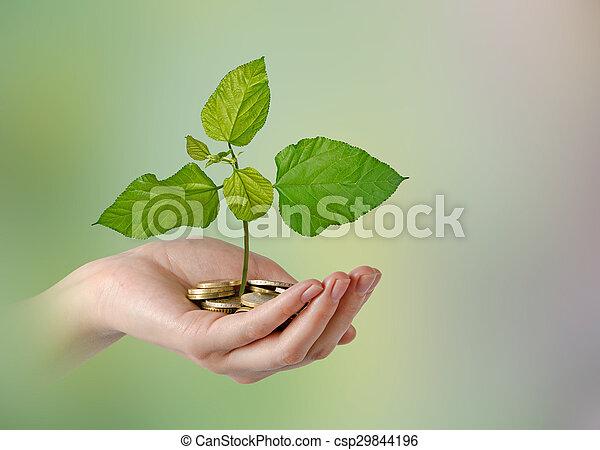 investeren, groene handel - csp29844196