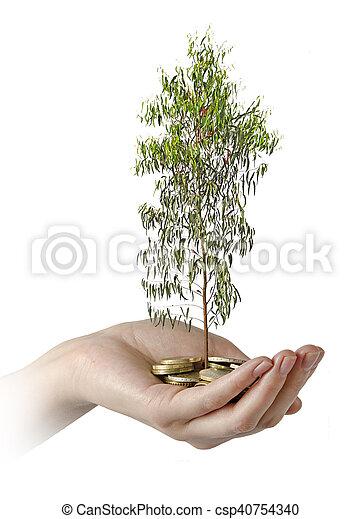 inwestując, zieleń handlowa - csp40754340