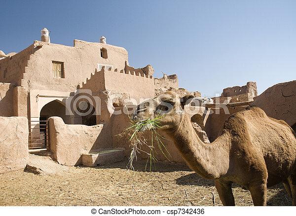 Irán Garmeh oasis adobe Arquitectura tradicional irlandesa casa del desierto - csp7342436
