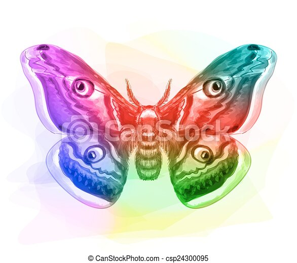 iridescen, butterfly., colours. - csp24300095