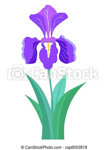 Stock illustrations of iris border illustration composition of iris flower pronofoot35fo Image collections