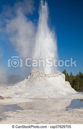 Irregular eruption in Castle Geyser in Yellowstone - csp37629705