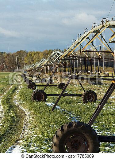 Irrigated Hay field - csp17785009