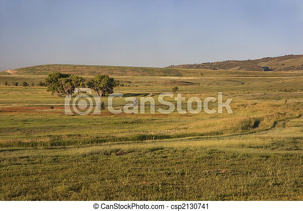 irrigated meadow at Colorado foothills - csp2130741