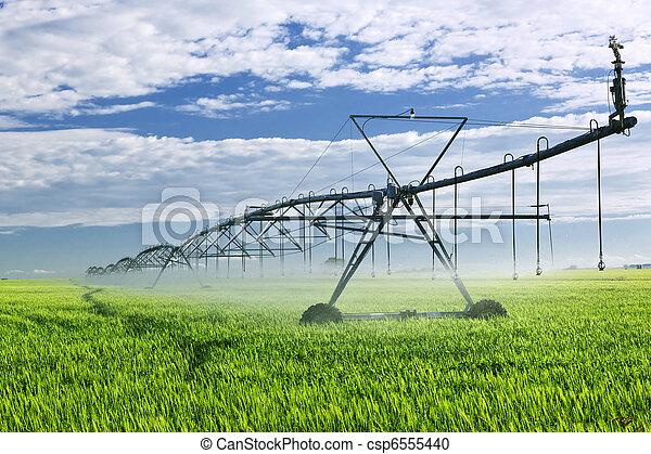 Irrigation equipment on farm field - csp6555440