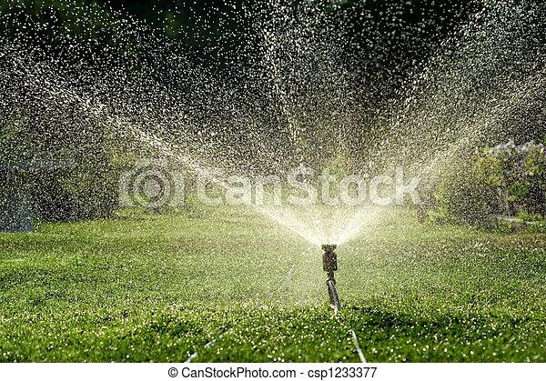 Irrigation - csp1233377
