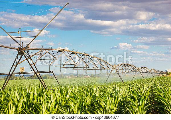 irrigation pivot - csp48664677