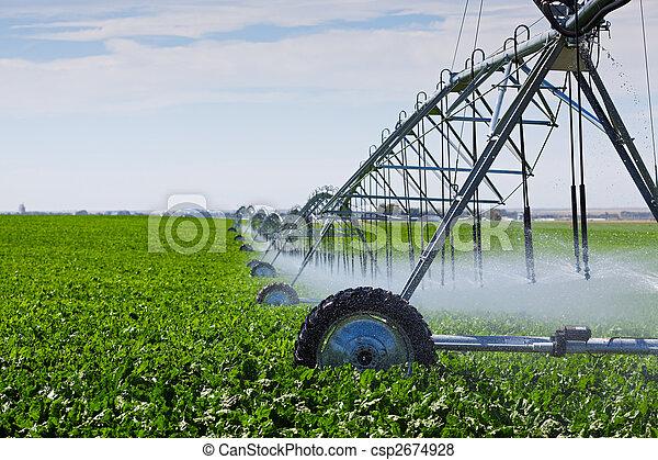 Irrigation Pivot - csp2674928