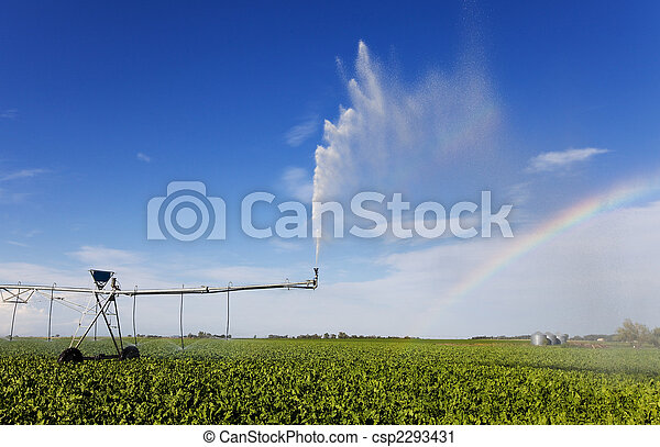 Irrigation rainbow - csp2293431