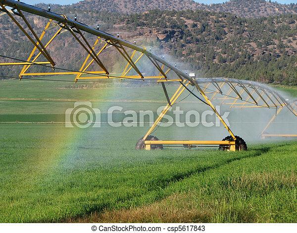 irrigation rainbow - csp5617843