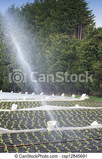 Irrigation - csp12845691