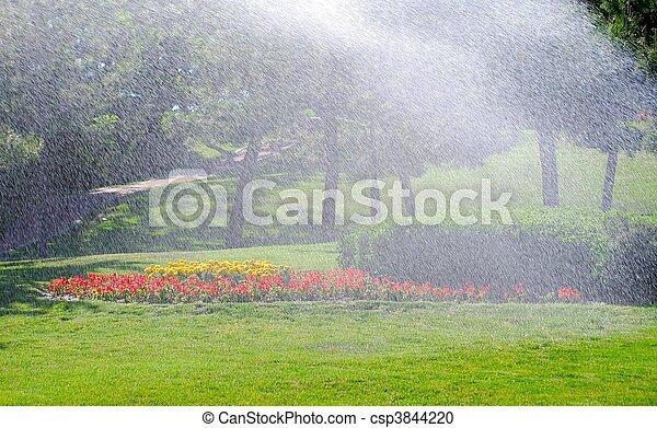 Irrigation - csp3844220