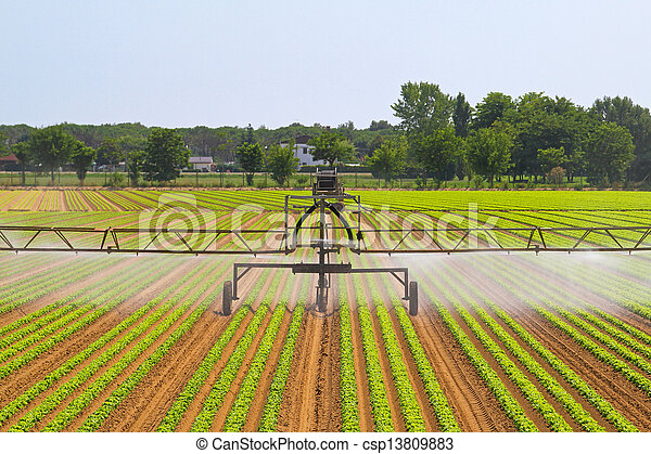Irrigation system - csp13809883