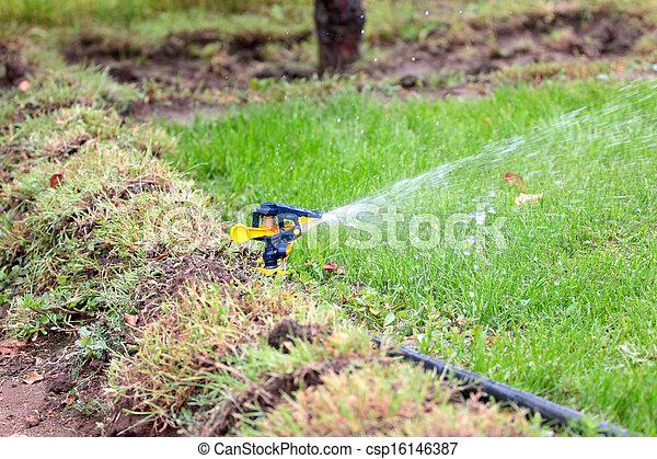 irrigation system - csp16146387