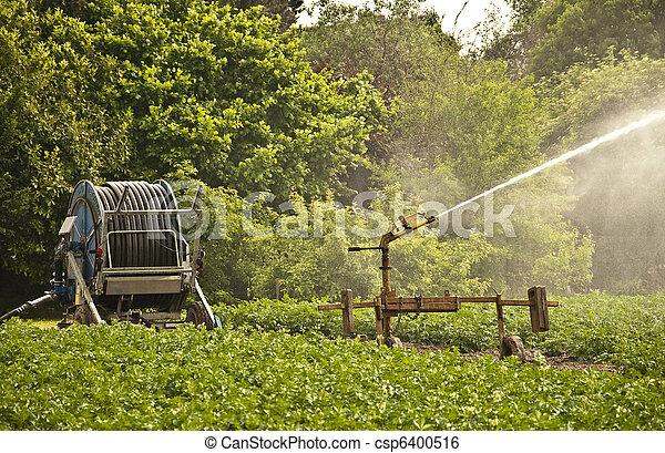 Irrigation System - csp6400516