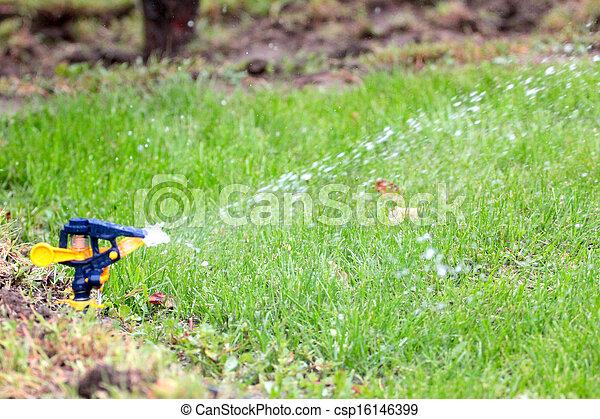 irrigation system - csp16146399