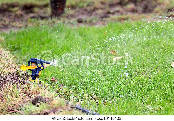 irrigation system - csp16146403