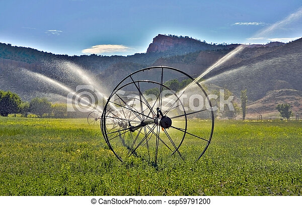 Irrigation System - csp59791200