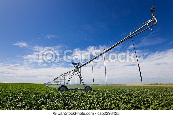 Irrigation tool - csp2293425
