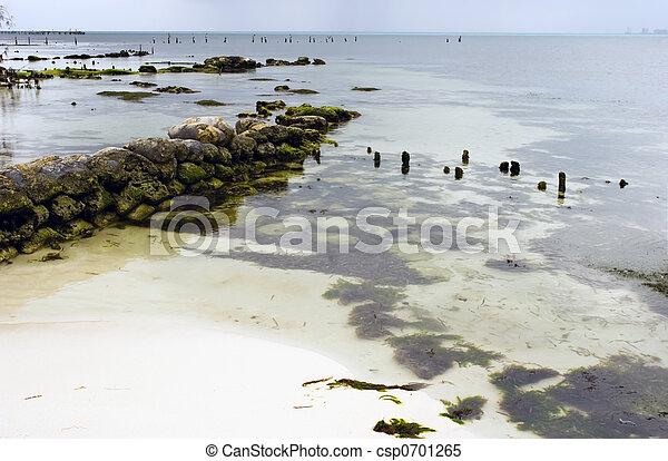 Isla Mujeres dock. - csp0701265