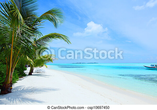 Isla tropical - csp10697450