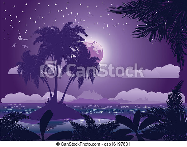 La isla tropical de noche - csp16197831