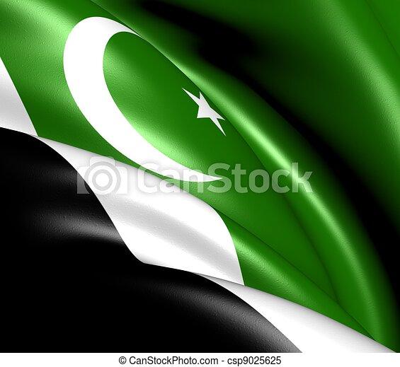 Islamabad Capital Territory Flag, Pakistan.  - csp9025625
