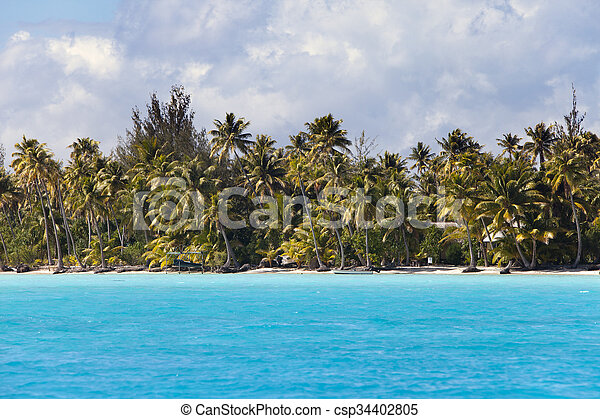 island with palm trees in the ocean - csp34402805