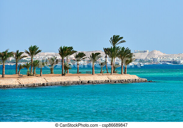 Island with palm trees on the Red Sea in Egypt - csp86689847