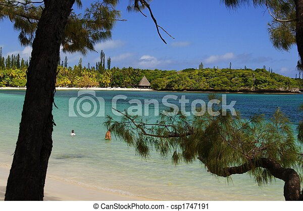 Isle of Pines South Pacific beach - csp1747191