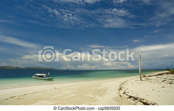 isola tropicale - csp5605935