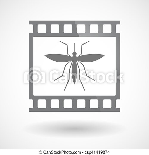 Isolated 35mm film frame slide photogram with  a mosquito - csp41419874