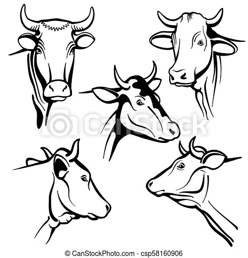 Isolated Cow Head Vector Portraits Cattle Faces For Farm Natural