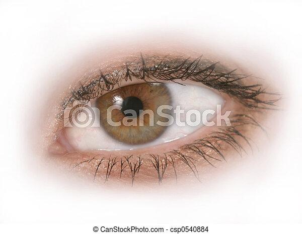 Isolated Eye 2 - csp0540884