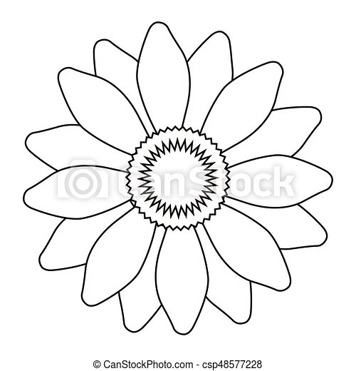 Flower outline vector. Isolated