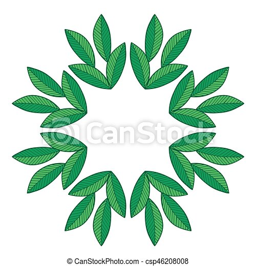 Isolated green leaf frames on the white background. vector leaves ...