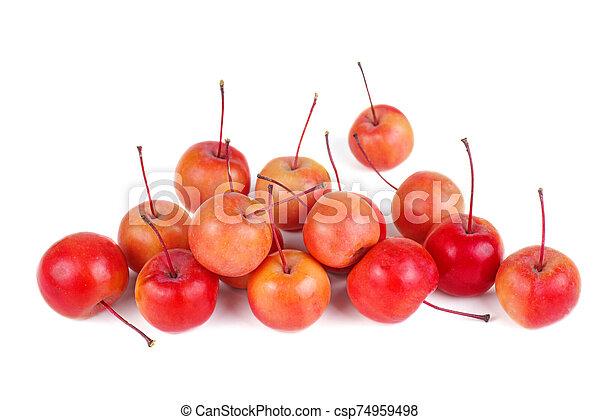isolato, fondo, mele, granchio, bianco - csp74959498