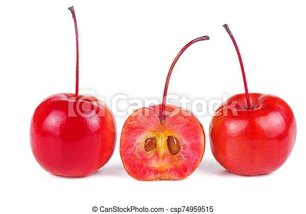 isolato, fondo, mele, granchio, bianco - csp74959515