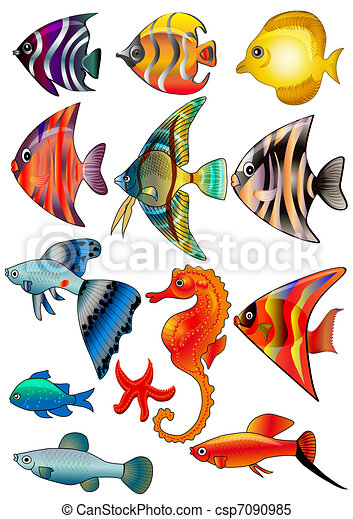 isolato, pesce bianco, fondo, kit - csp7090985