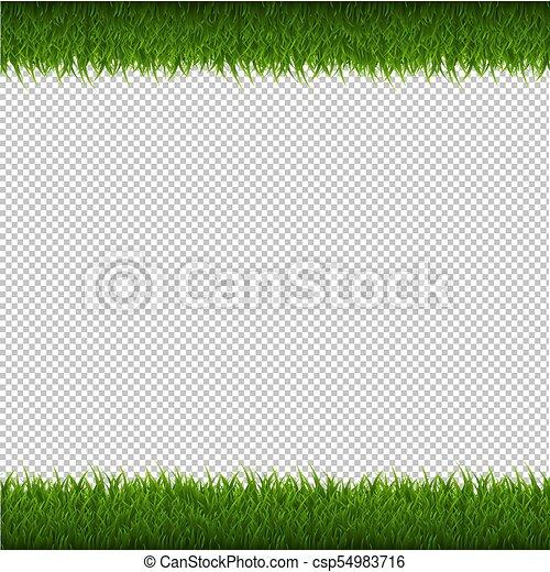 Isolato Sfondo Verde Erba Bordo Trasparente Vettore Isolato